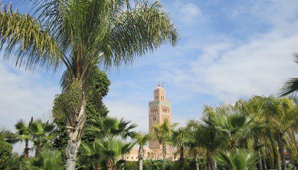 Environnement Maroc: Le gouvernement débloque 78 millions de dhs pour la création de projets environnementaux à Marrakech