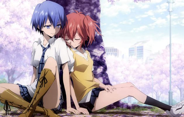 Revue : Akuma No Riddle