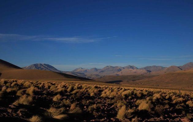 Atacama - Jour 1 : Entre Chui Chui et Caspana
