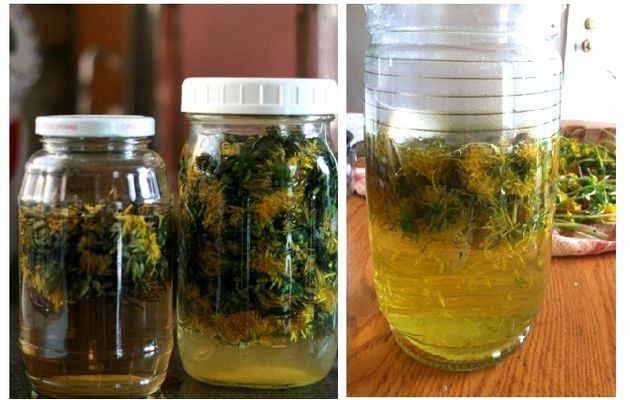 Cette herbe est 100 fois plus efficace que la chimiothérapie - Selon les scientifiques de l'Université de Windsor en provenance du Canada
