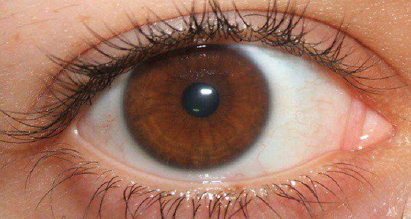 Secrets du peuple avec des yeux bruns, qu'ils se sont pas conscients
