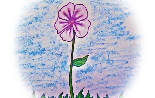 Flor de Mujer (Blog en Espanol)