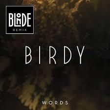 BIRDY ET NAVII WORDS