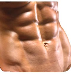 The Truth About Six Pack Abs: Ripped Six Pack Without The BS