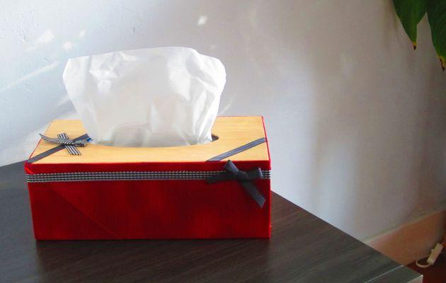 Ma Boîte à mouchoir en tissus.