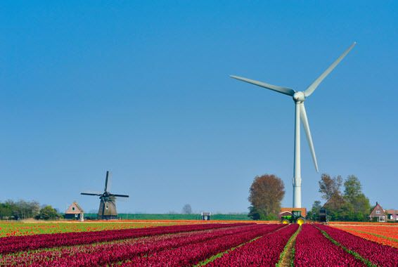 Promoting Wind Energy Needs Stronger Lobby
