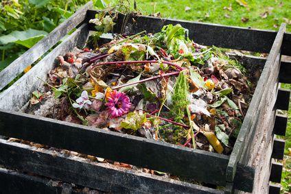 Je soigne mon compost