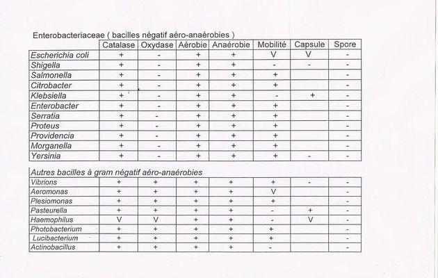 résumé des caractères biochimiques des entérobactéries et autres bacilles gram - aéro-anaérobies
