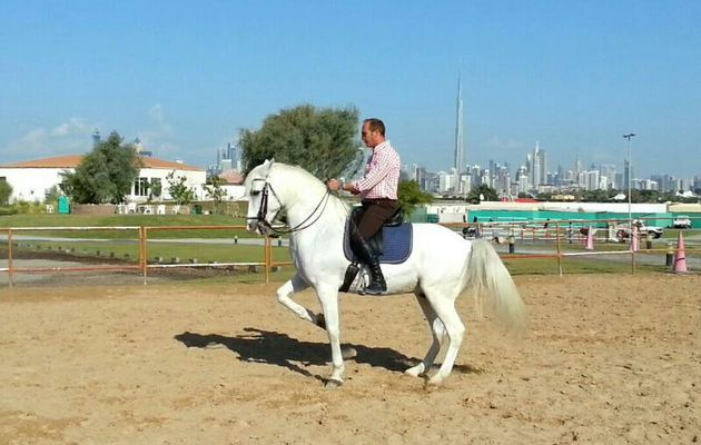 Bertrand Lecompte, your coach, manager of the equestrian stable and horse riding school