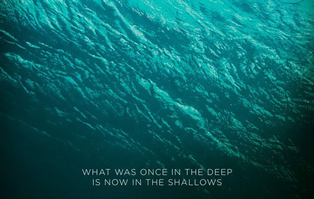 The Shallow (Film Avis)