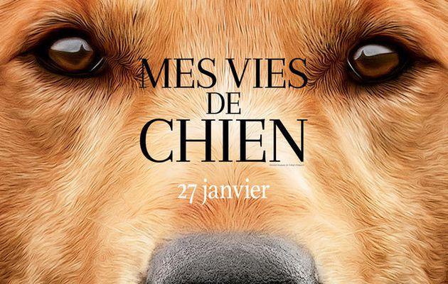 Mes vie de Chiens (Avis Film)