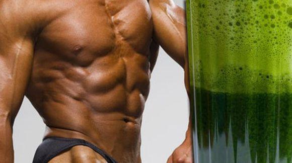 Das Ideal-Muskelaufbau-Training