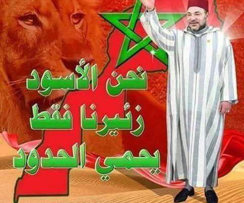 همة وشان وأناقة وجمال سيدنا أسد اللهم لاحسد ووقفة تقتل العديان
