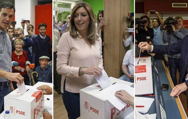 Pedro Sánchez gana las Primarias con el 85% de votos escrutados ¿Cómo estará Susana Díaz?