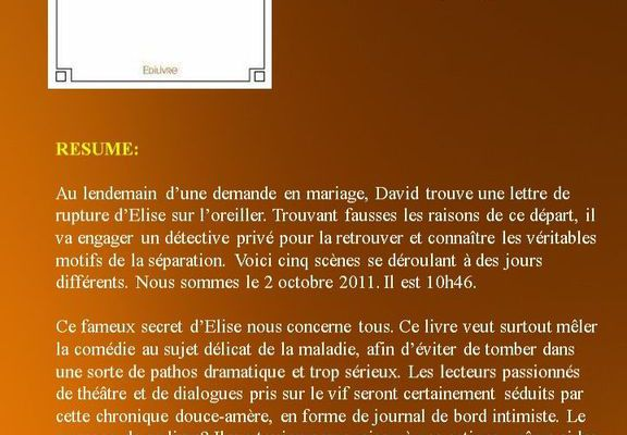 Affiche promotionnel le secret d'Elise