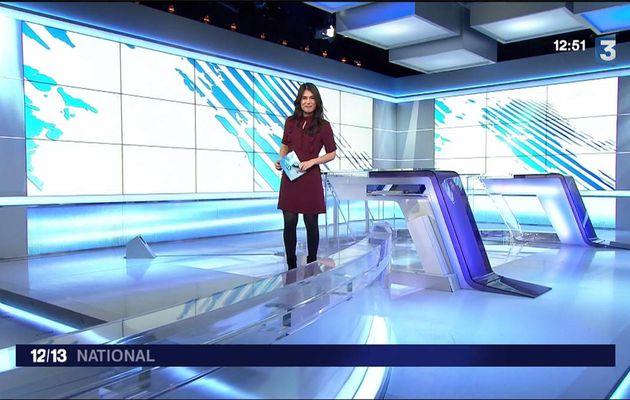 Emilie Tran Nguyen Le 12/13 France 3 le 26.01.2017