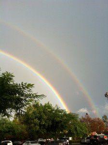 """Buzz : après les """"LOL Cats"""", les """"Double Rainbows"""""""