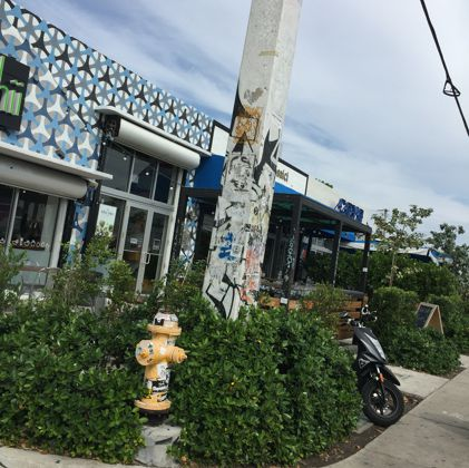 Wynwood : quartier original et artistique à Miami 🇺🇸Wynwood : original & artistic district in Miami