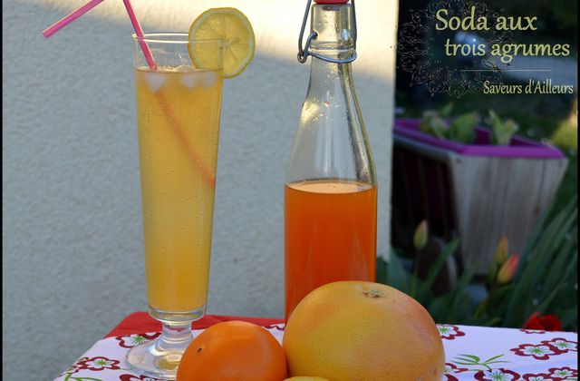 Soda naturel aux agrumes