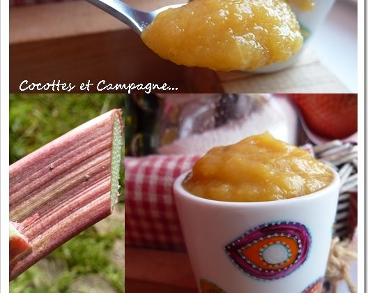 Compote Abricots, Rhubarbe et Pommes