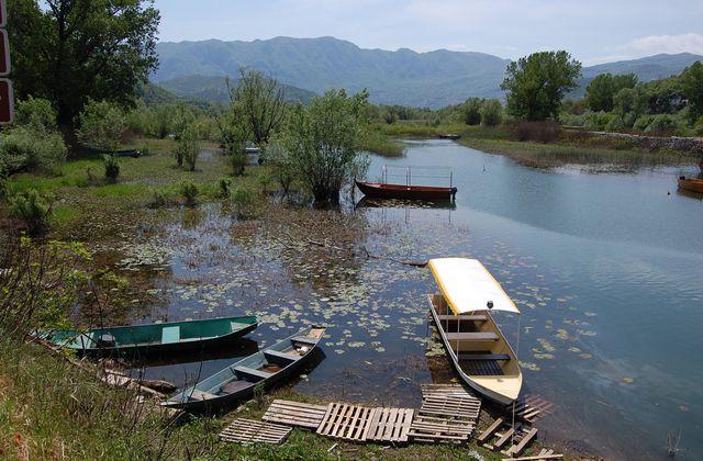 Monténégro - Parc national du lac de Skadar