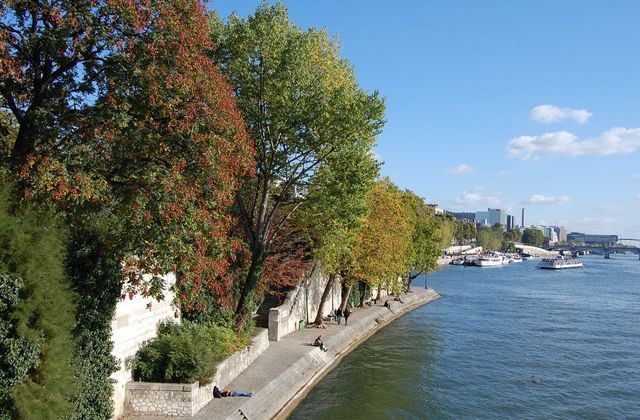 Paris - Rives de la Seine