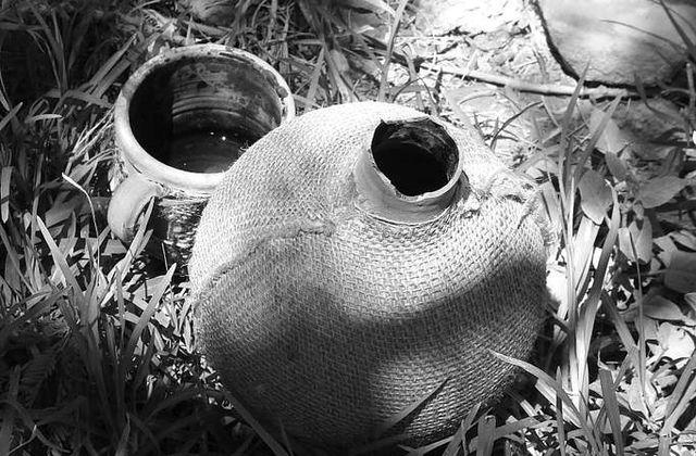 « Dar, Douar, Dénia », ou les possibles  principes fondateurs  d'une maâna écologique algérienne