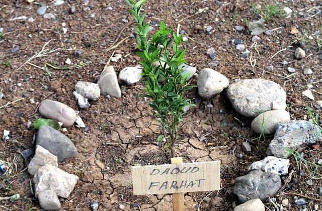 """""""Dar, Douar, Dénia"""", ou les possibles principes fondateurs d'une Maâna écologique algérienne"""