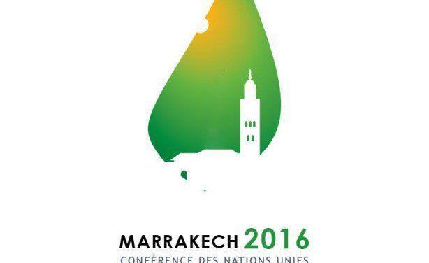 Bilan de la COP 22 pour la société civile et l'Afrique (Radio)
