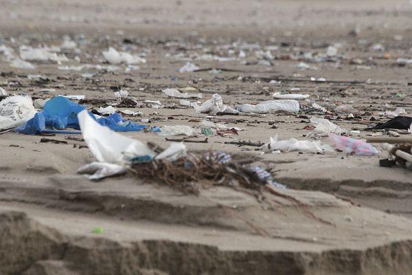 Opération de nettoiement en Algérie: il faudrait dépasser le stade des symboles ...