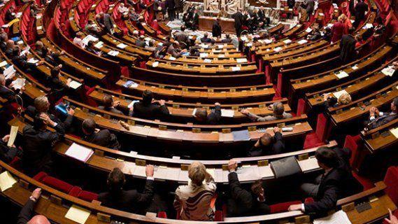 Abeilles : sur proposition de Gérard Bapt, l'Assemblée nationale vote l'interdiction des néonicotinoïdes en 2016