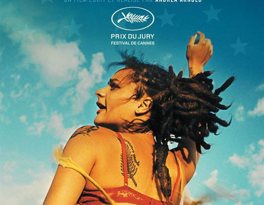 AMERICAN HONEY - SASHA LANE
