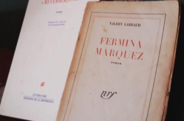 Henry James - Valéry Larbaud : deux héritiers aux fortunes diverses