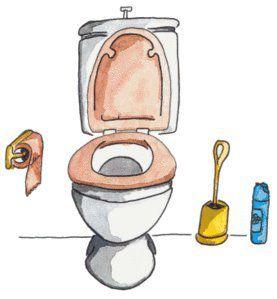 Astuces beaut sant et maison - Deboucher toilette bicarbonate soude ...