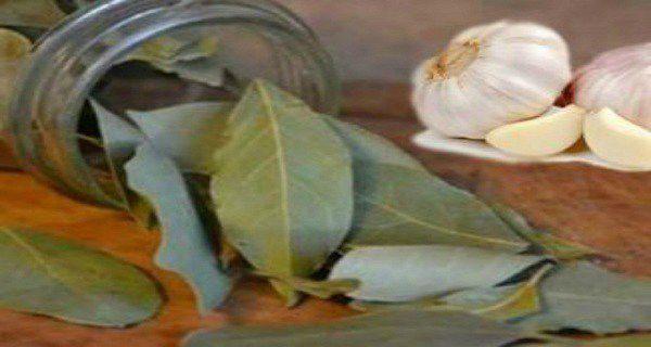 Je n'ai jamais imagine que 7 gousses d'ail et 7 feuilles du laurier dans une bouteille pourraient changer ma vie une fois pour toute !