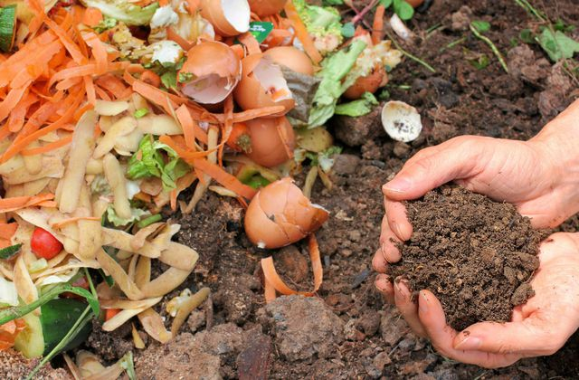 Faire son compost, c'est facile !