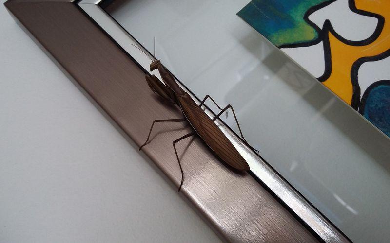 Un visiteur à l'atelier
