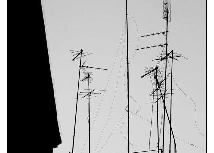 [Photos] Champ d'antennes.