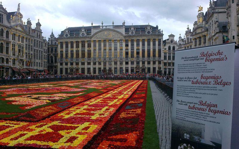 Le tapis de Fleur de la Grand-Place de Bruxelles