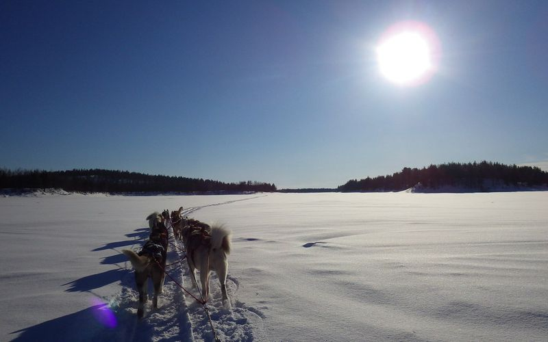 Laponie 2015 suite 28