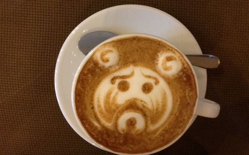 My Latte Bear