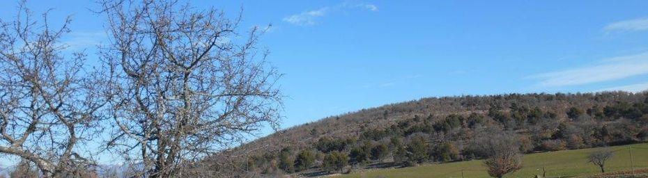 Alpes de Hte Provence, Lubéron, Col de Murs : 105km - 1184m