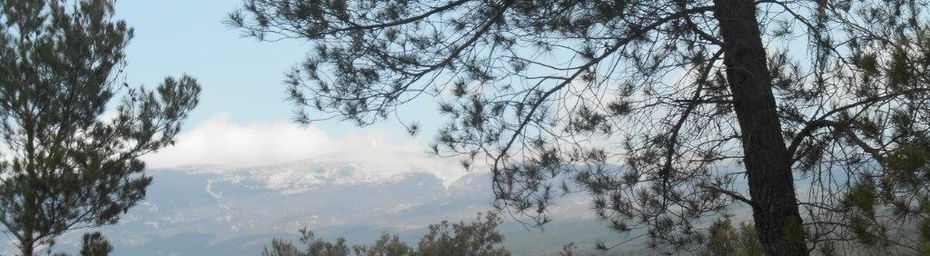 Tour du Ventoux avec les magnifiques Gorges de la Nesque.