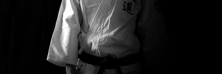 Hino Akira à Albi et Bordeaux, 18 au 21 avril