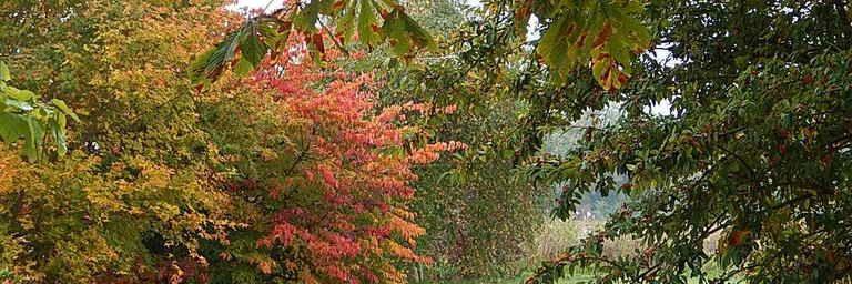 Les Jardins de Berville : une découverte extraordinaire.