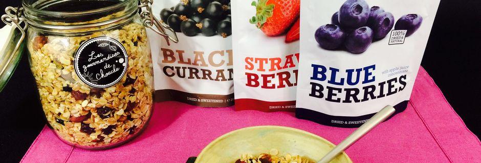 Granola fruits rouges et noirs avec mon partenaire Elixanatur.fr