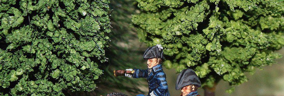 Le Général en chef de l'Armée Anglo-Neerlandaise, le Duc de Wellington