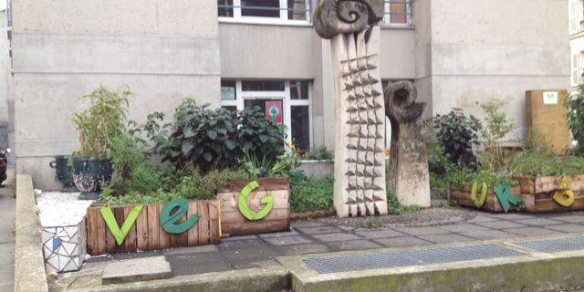Conseil de quartier mercredi 19 novembre 2014 sur la végétalisation à La Chapelle