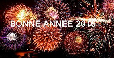 Bonne année 2016 à La Chapelle