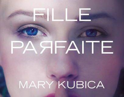 Une fille parfaite : roman